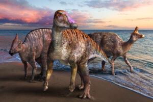 В Японии обнаружили неизвестный вид гадрозавра