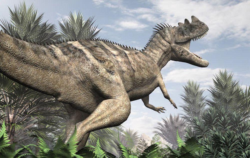 14 мест в мире, где можно пройти по следам динозавров.Вокруг Света. Украина