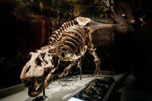 Палеонтологи смоделировали походку тираннозавра