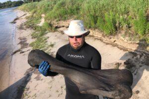 Во Флориде дайверы наткнулись на кость мамонта: ей 100 000 лет