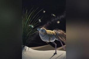 Кроха-динозавр из монгольской пустыни был зорким и чутким охотником