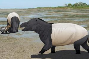 В США нашли сотни следов неизвестных млекопитающих возрастом 58 млн лет