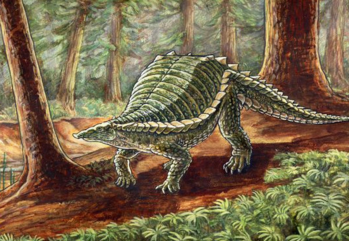 Этозавр из Польши был похож на крокодила, кабана и броненосца.Вокруг Света. Украина
