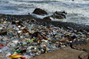 Половину мировых пластиковых отходов производят всего 20 компаний