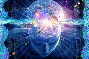Нейрофизиолог предложил новую гипотезу происхождения сна