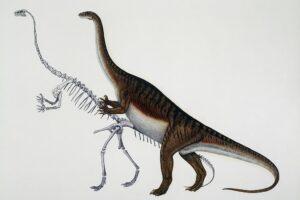 Динозавр, который рос как дерево