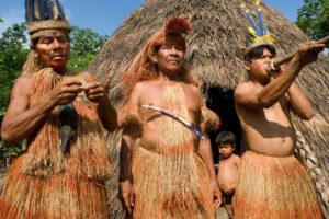 Индейцы Амазонии начали вымирать задолго до прибытия европейцев