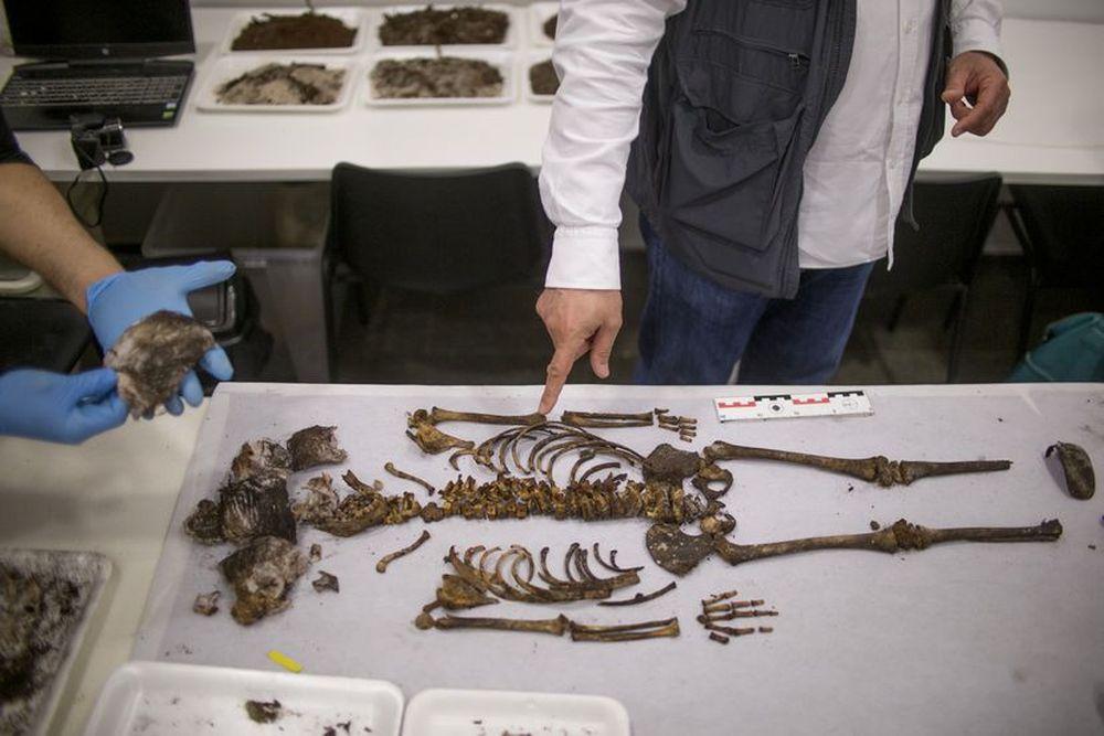 Скелет девочки, жившей 700 лет назад, найден во дворце Алькасар в Севилье: кем она могла быть?