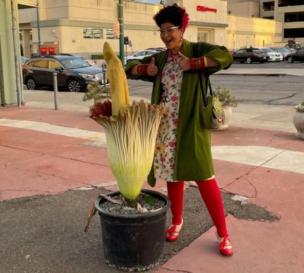 В Калифорнии коллекционер показал трупный цветок, который распускается раз в 10 лет.Вокруг Света. Украина
