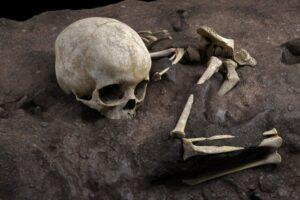 В Африке нашли древнейшую могилу возрастом почти 80 тысяч лет