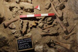 В Италии нашли останки 9 неандертальцев, съеденных гиенами