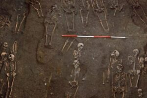 Во времена Средневековья люди болели раком примерно в два раза реже, чем сейчас