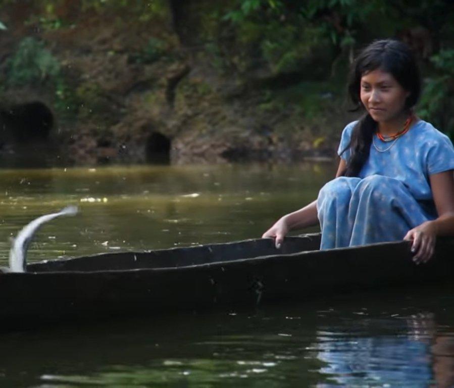 Аборигены Амазонки стареют на 70% медленнее жителей западных стран