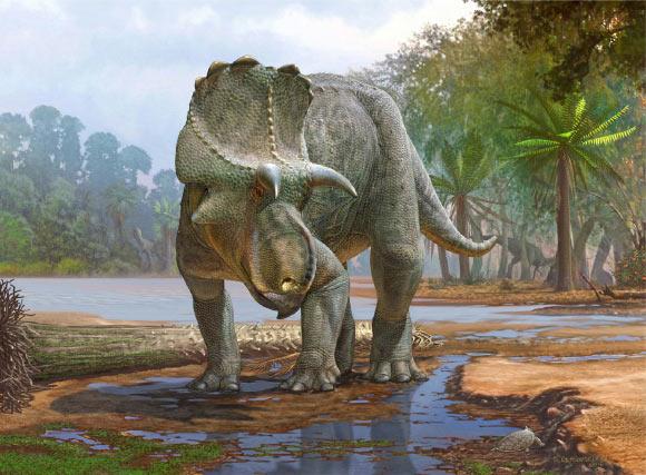 В Нью-Мексико открыли новый вид рогатых динозавров