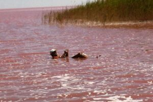 Интересные места Украины: Лемурийское озеро