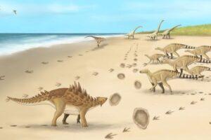 Палеонтологи распознали следы последних динозавров Британии