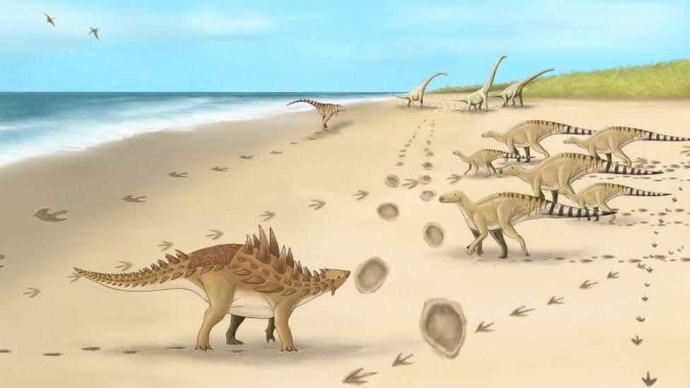 Палеонтологи распознали следы последних динозавров Британии.Вокруг Света. Украина