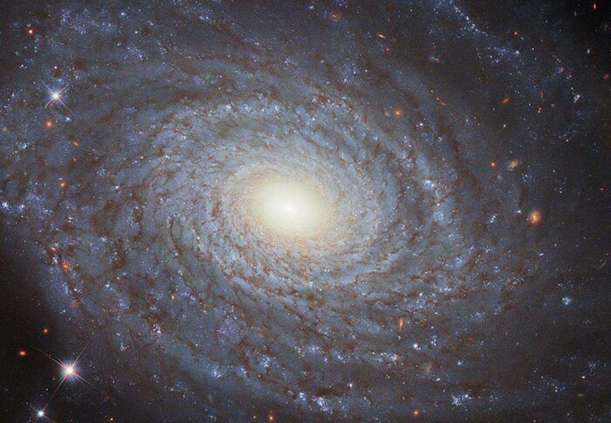 Hubble сделал детальный снимок спиральной галактики из созвездия Овна