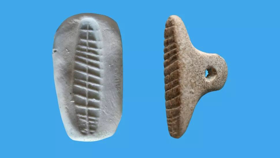 В Израиле нашли оттиск древнейшей торговой печати возрастом 7000 лет