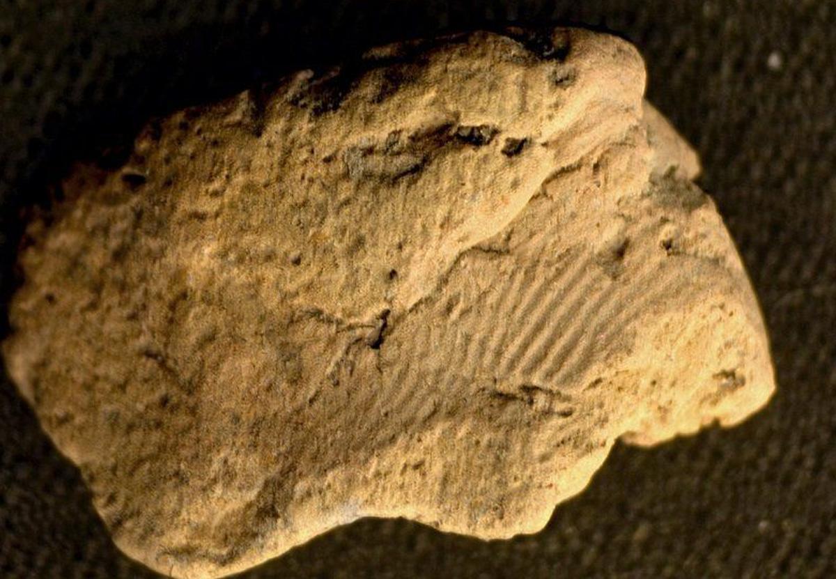 Археологи разгадали тайну отпечатков на древней керамике Оркнеев.Вокруг Света. Украина