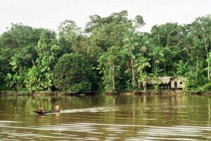 Народы Амазонии жили в сбалансированной экосистеме 5000 лет