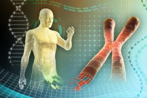 Впервые в истории генетики взвесили хромосомы человека