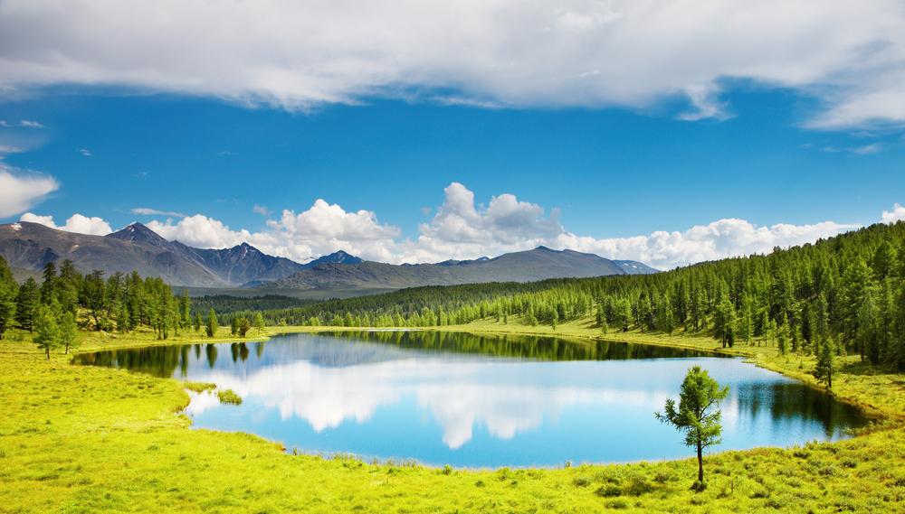 В озерах планеты стремительно истощается кислород.Вокруг Света. Украина