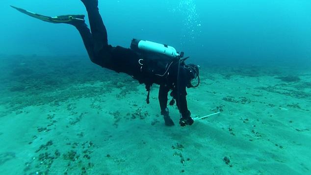 В США подводные археологи обнаружили орудия из обсидана возрастом 9000 лет.Вокруг Света. Украина