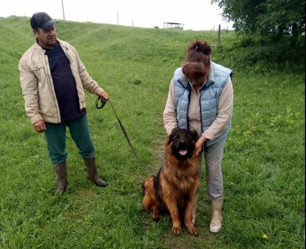 В Харькове через три года к хозяевам вернулась украденная собака