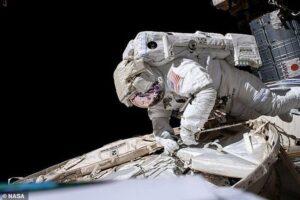 Как космические полеты влияют на иммунную систему астронавтов: новые данные