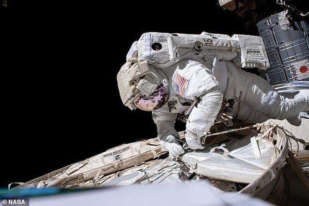 Как космические полеты влияют на иммунную систему астронавтов: новые данные.Вокруг Света. Украина