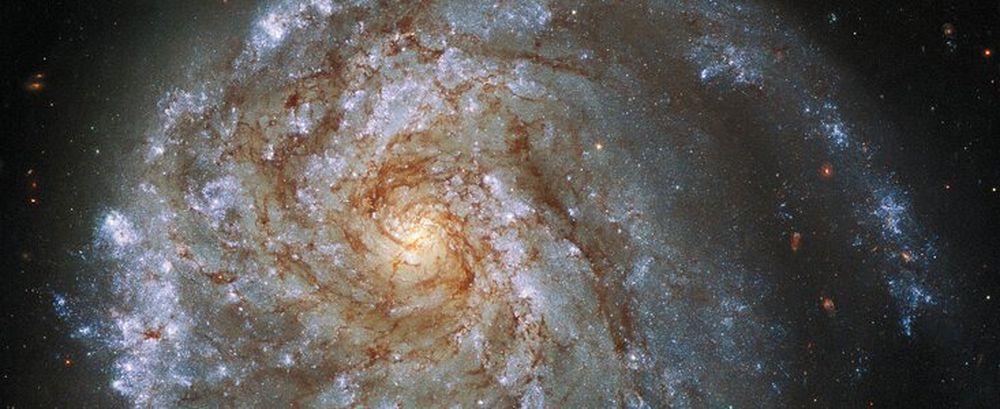 Телескоп Хаббл обнаружил удивительную деформированную галактику: видео.Вокруг Света. Украина
