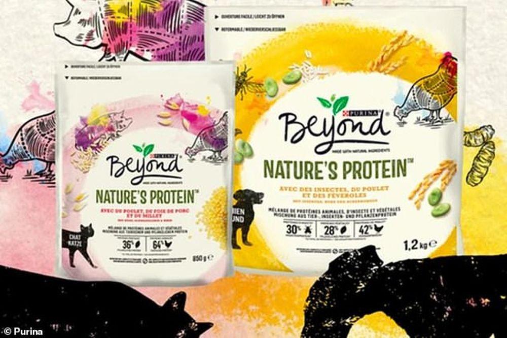 В корма для домашних животных стали добавлять белок, получаемый из насекомых.Вокруг Света. Украина