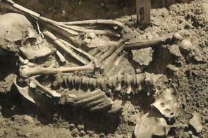 Обнаружен самый древний скелет человека, погибшего  от зубов акулы. Ему 3000 лет