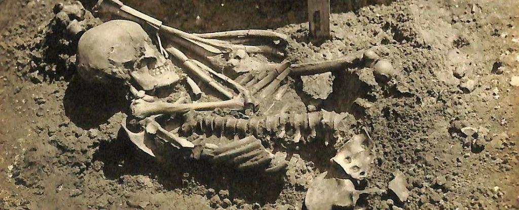 Обнаружен самый древний скелет человека, погибшего  от зубов акулы. Ему 3000 лет.Вокруг Света. Украина
