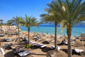 Деякі факти про готелі SUNRISE у Єгипті, які зупинять ваш вибір відпочинку саме на них