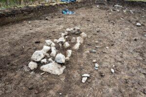 Археологи нашли христианское захоронение младенцев-близнецов викингов