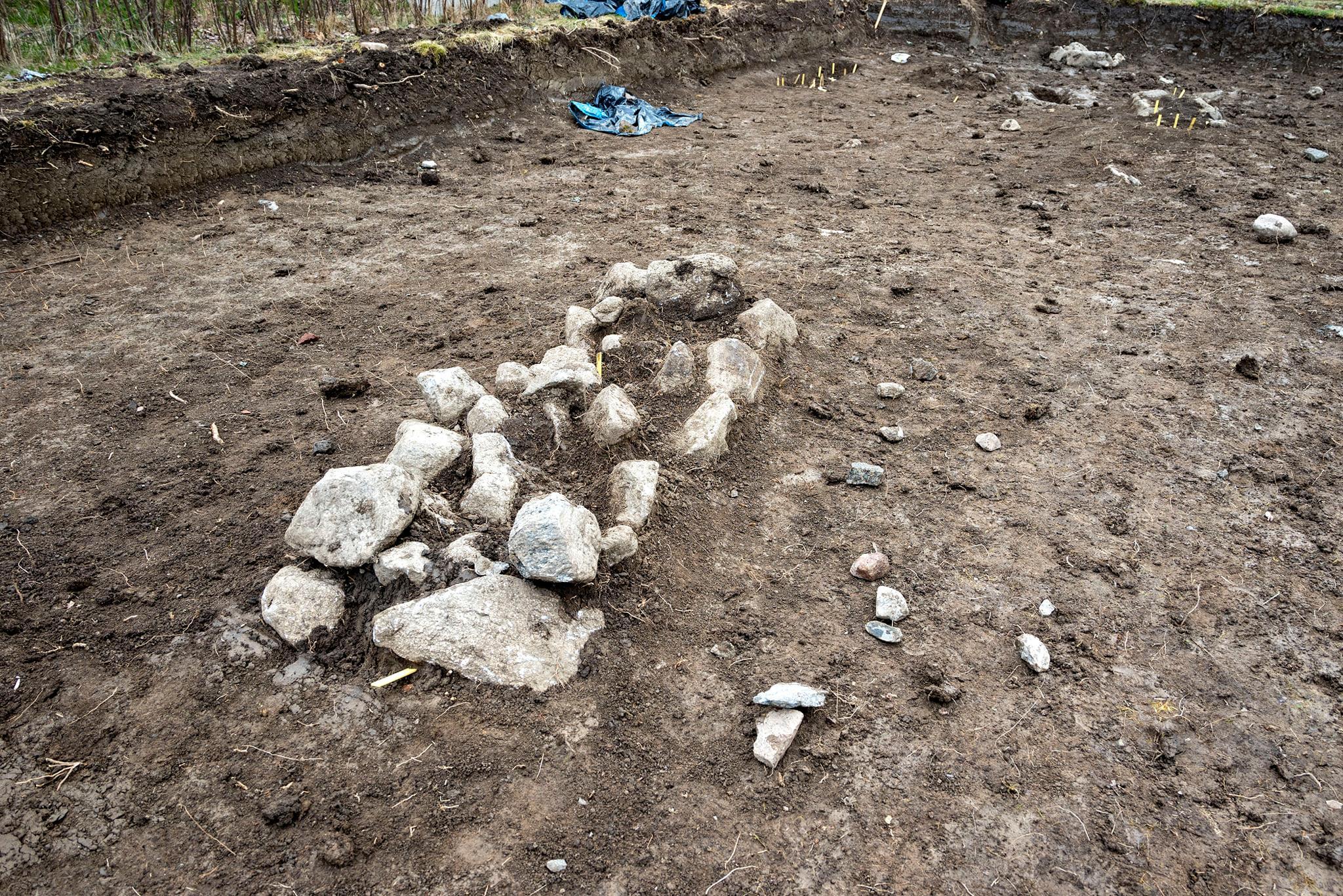 Археологи нашли христианское захоронение младенцев-близнецов викингов.Вокруг Света. Украина