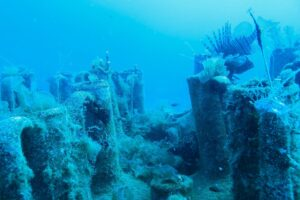 Дайвинг-туризм: на Кипре для ныряльщиков откроют древнюю гавань