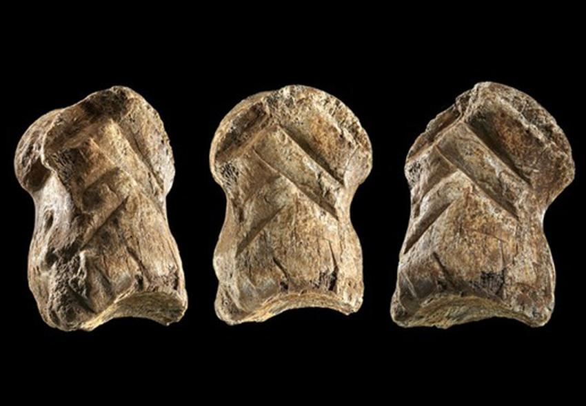 Древнейшее произведение искусства: в Германии нашли статуэтку возрастом более 50 тыс. лет.Вокруг Света. Украина