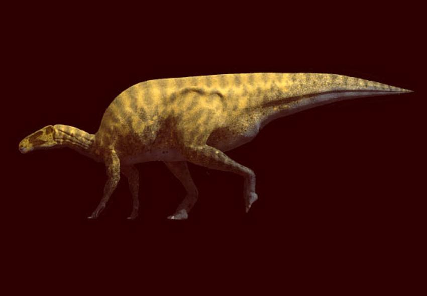В Испании открыли новый вид динозавра с тяжелым хвостом и когтями-бритвами.Вокруг Света. Украина