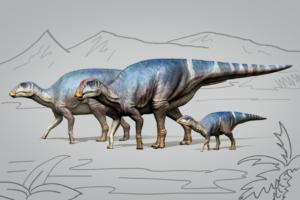 На пляже в Японии обнаружили окаменелость неизвестного гадрозавра