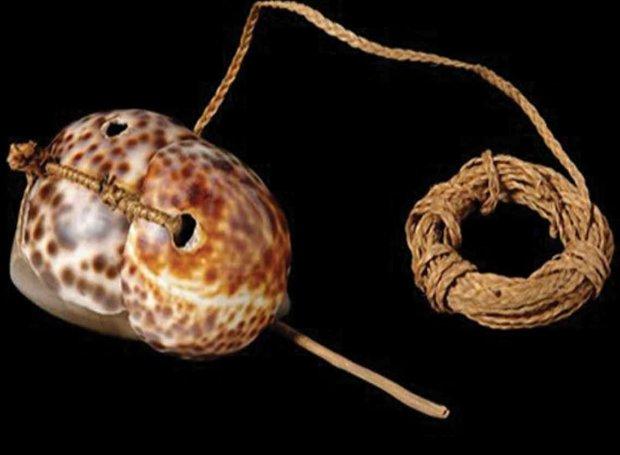 В Океании нашли древнейшее приспособление для ловли осьминогов