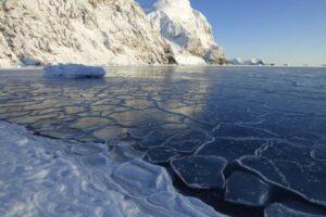 В Антарктиде официально зарегистрировали очередной температурный рекорд