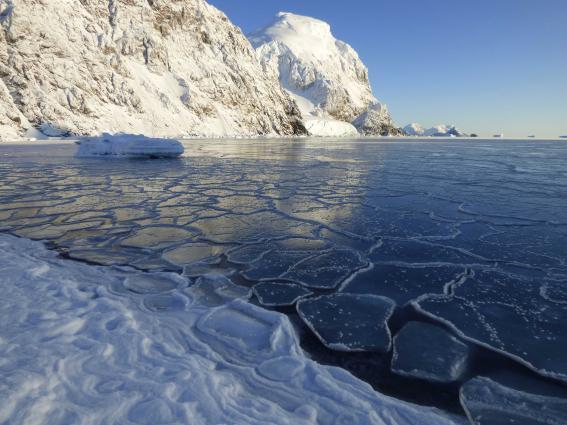 В Антарктиде официально зарегистрировали очередной температурный рекорд.Вокруг Света. Украина