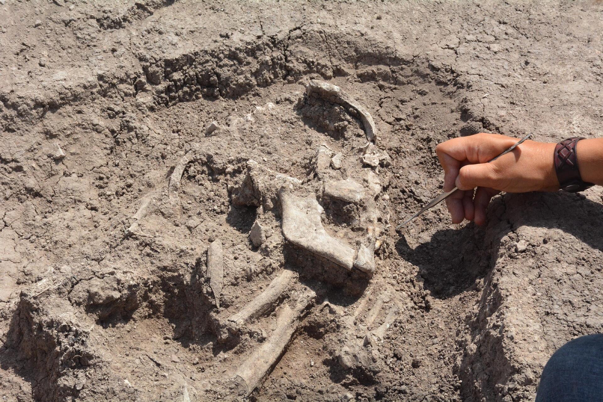В Турции нашли древнейшее в стране захоронение подростков.Вокруг Света. Украина