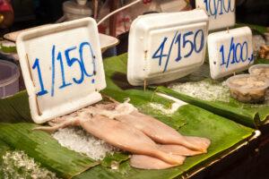 Китай временно прекращает вылов кальмаров