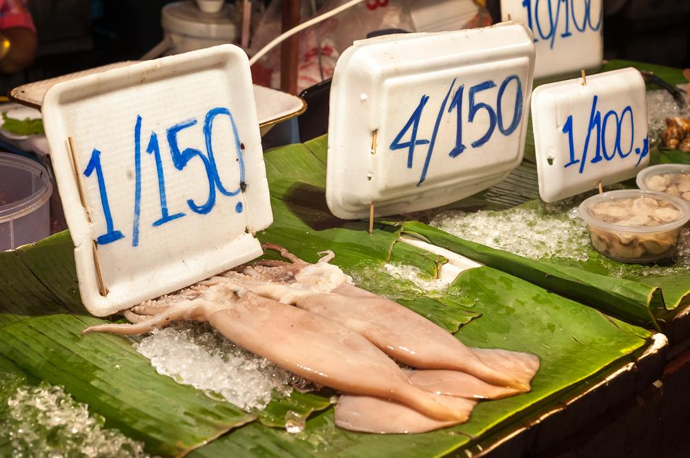 Китай временно прекращает вылов кальмаров.Вокруг Света. Украина