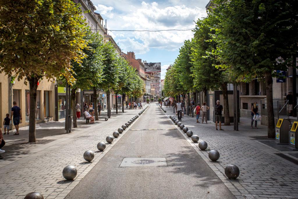 Даже одиночные деревья помогают охладить город в ночное время - новое исследование.Вокруг Света. Украина