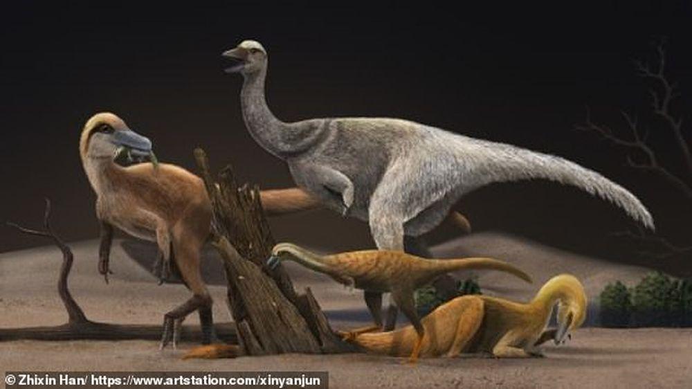 Как динозавры-альваресзавры уменьшились в размере от страуса до курицы.Вокруг Света. Украина